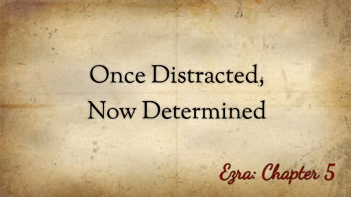Once Distracted, Now Determined