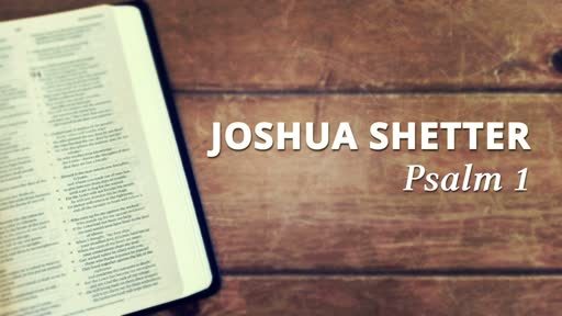 Joshua Shetter - Feb 17th, 2018