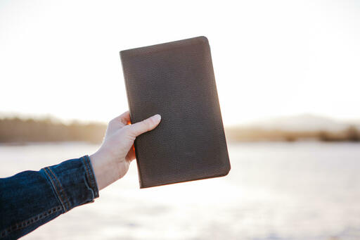 Hand in Frame Holding Bible