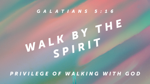 February 24, 2019  Privilege Walking with God
