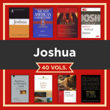 Joshua Study Collection
