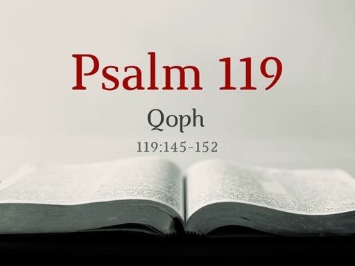 Psalm 119 (14)