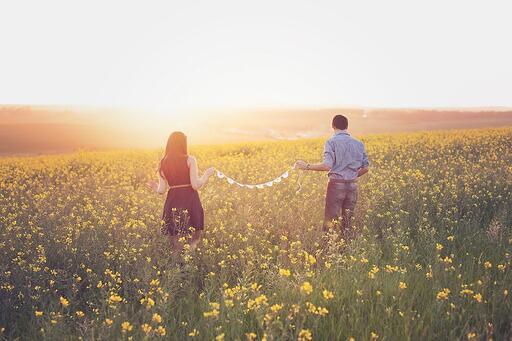 Field Dreamy Sunset Couple Canola Walking In Love