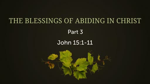 The Blessings of Abiding in Christ, Parts 2&3