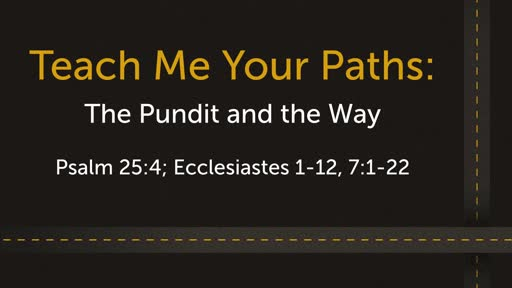 Teach me your Paths: The Pundit and the Way