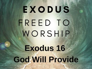 Exodus 16: God Provides