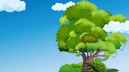 Treehouse Adventure sermon title 16x9 97d1e105 c78e 4035 ad7c eb16bb7cb7bf PowerPoint Photoshop image