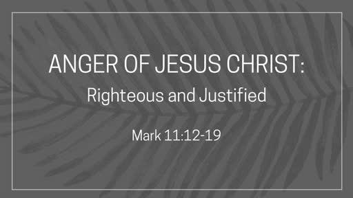 Anger of Jesus Christ