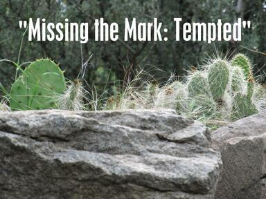 Missing the Mark: Tempted