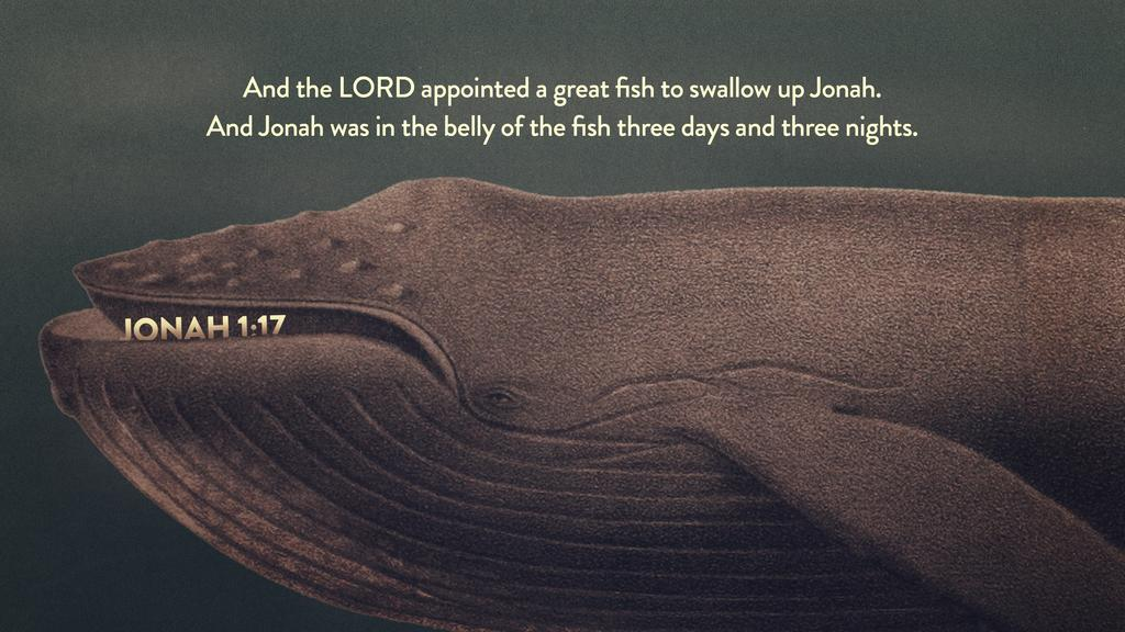 Jonah 1:17 large preview