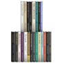 Wipf & Stock New Testament Studies Collection (22 vols.)