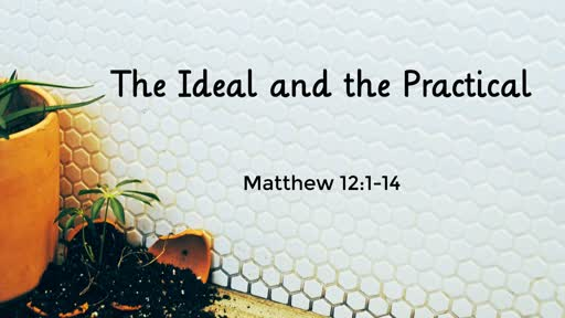 Sunday March 10th 2019, Matthew 12:1-14 The Ideal and the Practical
