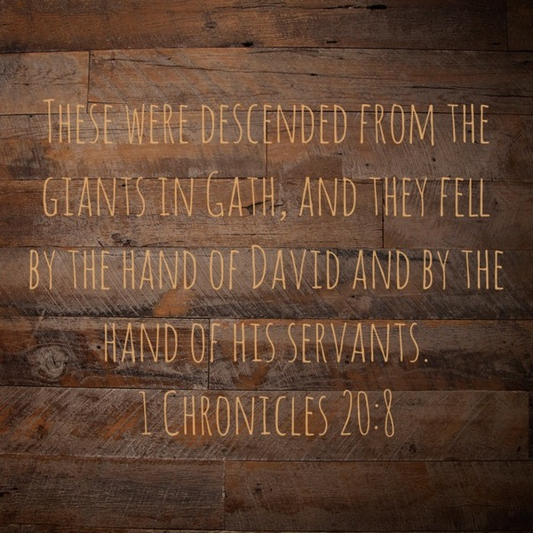 1 Chronicles 20: