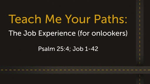 Teach me your Paths: The Job Experience (for onlookers)