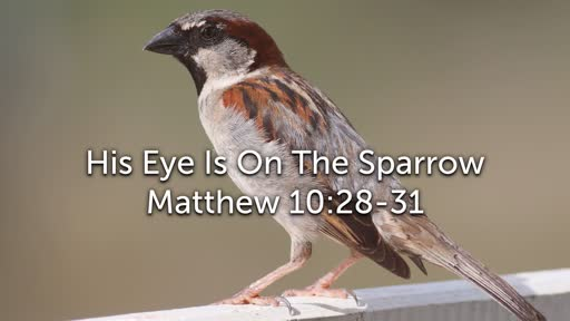 Sunday, March 17 - PM - Jack Caron - His Eye Is On The Sparrow