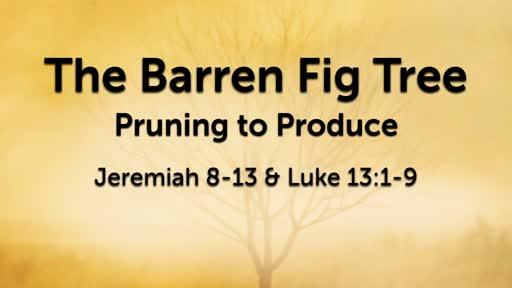 Mar 24 - The Barren Fig Tree