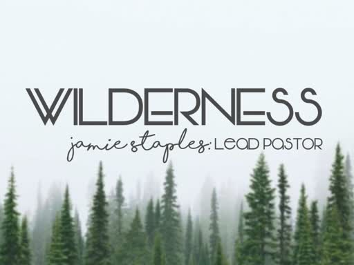 The Wilderness--The Spirit Sends