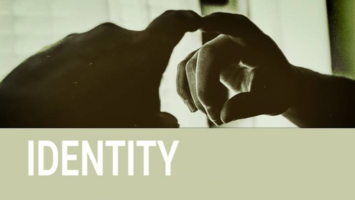Identity  -  You Are a Reflector