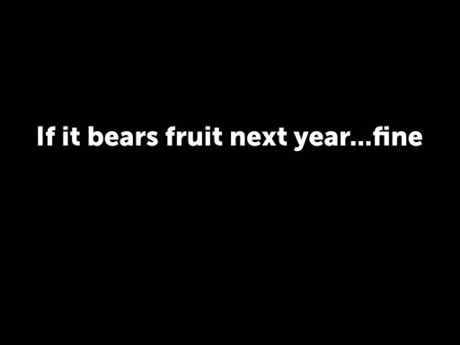 If it bears fruit next year...fine