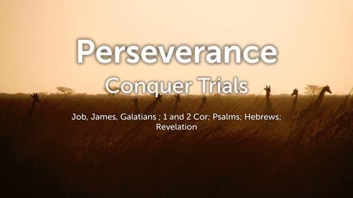 Perseverance - Pastor Michael Harris