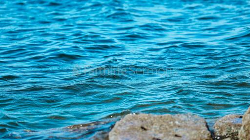 Water Scenery