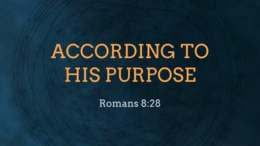 According to His Purposes 3-24-19