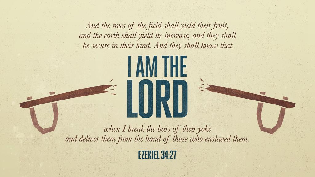 Ezekiel 34:27 large preview