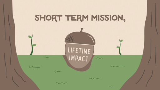 Short Term Mission Lifetime Impact