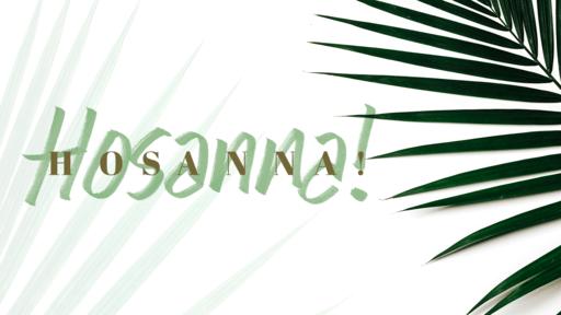 Hosanna Hosanna Palm