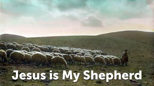 Jesus is My Shepherd