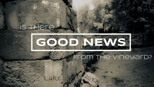 Is There Good News From the Vineyard?
