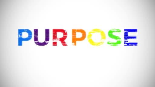 Purpose Ls: 4
