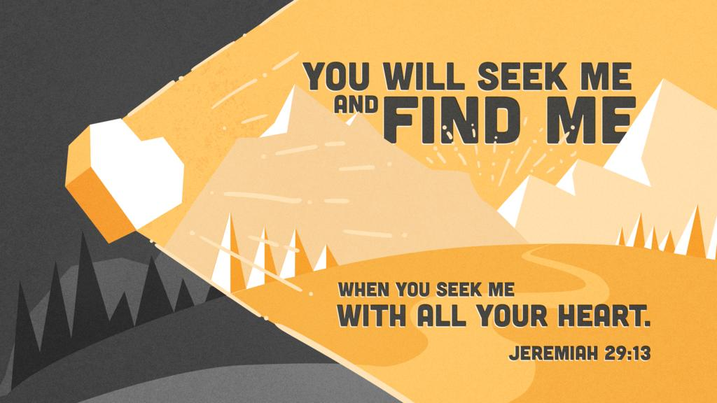 Jeremiah 29:13 large preview