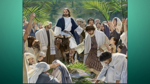 Palm Sunday  Quandary