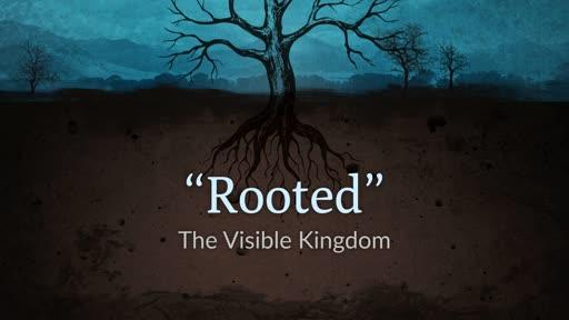 The Visible Kingdom