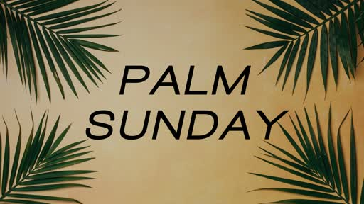 Sunday April 14 2019 Palm Sunday