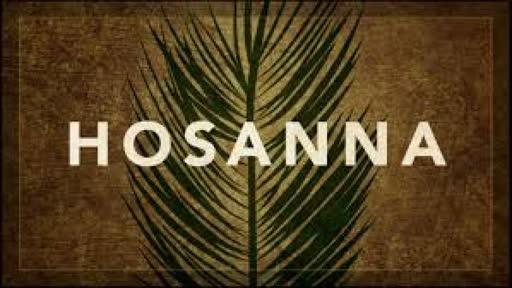 Hosanna  (God of  All Comfort)