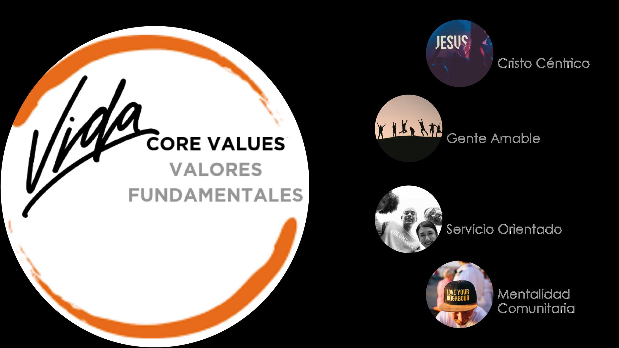 VIDA Core Value Graphics