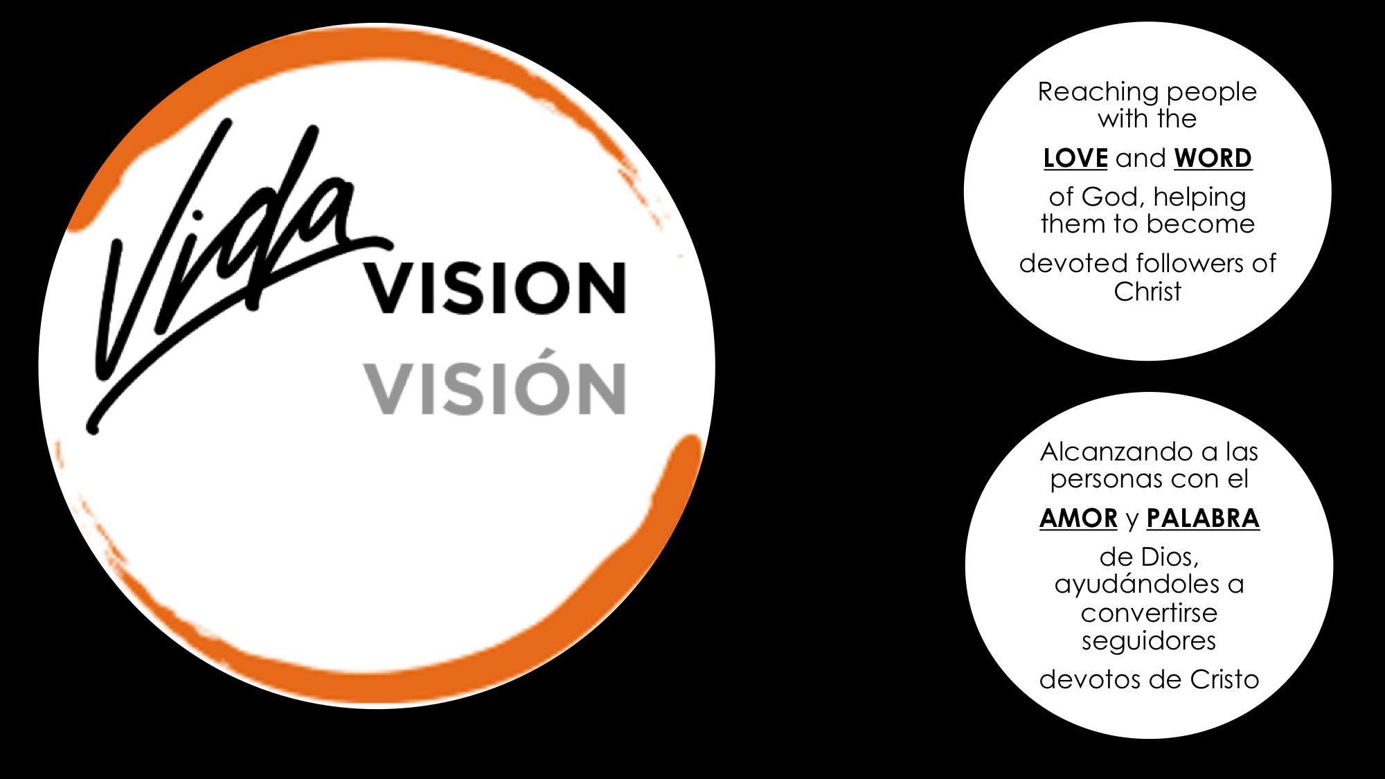 VIDA Vision Graphics
