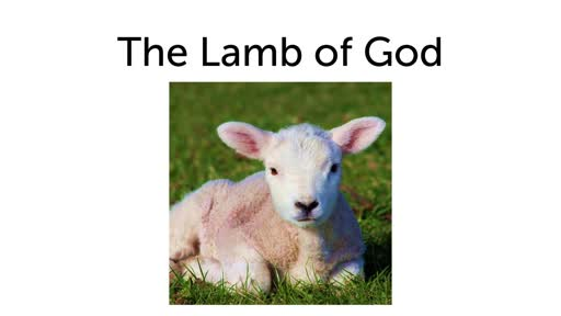 Lamb of God Pioneer Outreach 4/20/19