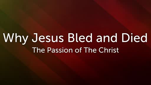 Why Jesus Bled and Died