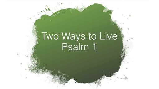 28 April 2019 AM - Psalm 1