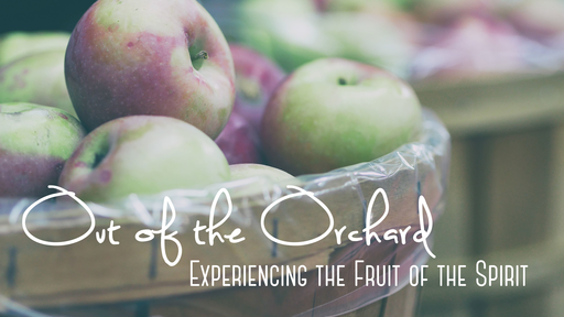 Out of the Orchard