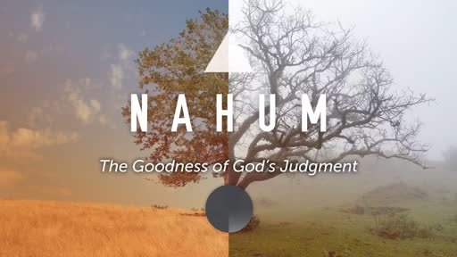 God's good judgement: how to resoponed to God's sovereign punishment