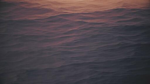 Sandy - Content - Motion