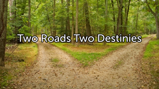 Two Roads Two Destinies