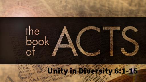 3/24/2019 - Unity in Diversity