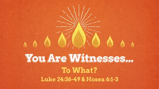 May 12 - You Are Witnesses...