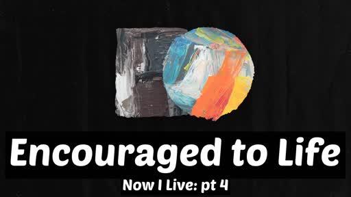 Encouraged to Life