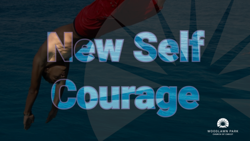 2019 | New Self Courage